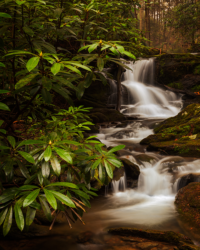 Don\'s Photo Blog and Galleries | Mill Creek Falls